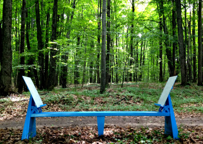 Michigan Legacy Art Park Bench - Thompsonville,MI